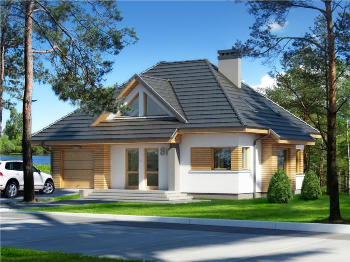 Projekt domu Dominanta